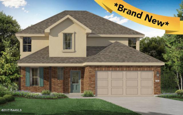 218 Caldwell Sugar Road, Youngsville, LA 70592 (MLS #17011391) :: Red Door Realty