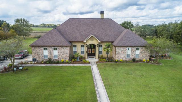 1074 Pecan Ridge, St. Martinville, LA 70582 (MLS #17011551) :: Keaty Real Estate