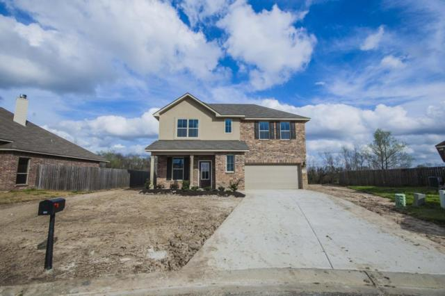 101 Golden Harvest Lane, Rayne, LA 70578 (MLS #18001663) :: Keaty Real Estate