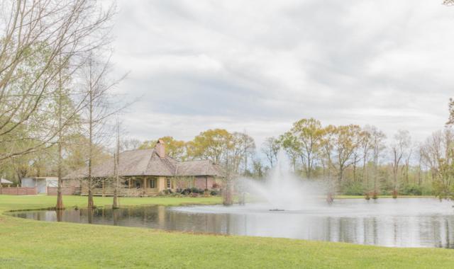 220 Twin Lakes Drive, Youngsville, LA 70592 (MLS #18002207) :: Keaty Real Estate