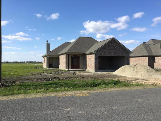 1222 Delcambre Road, Breaux Bridge, LA 70517 (MLS #18002474) :: Keaty Real Estate
