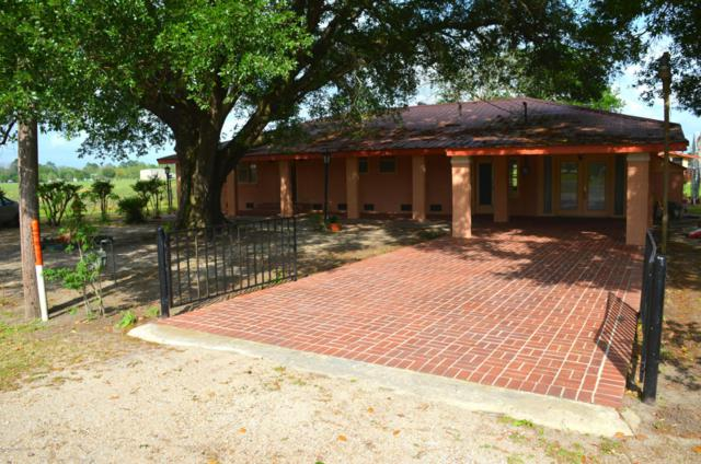 8317 Weeks Island Road, New Iberia, LA 70560 (MLS #18003953) :: Red Door Realty