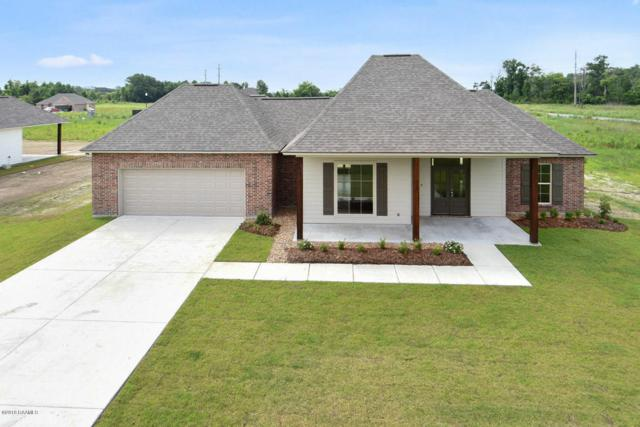 1010 Breeze Drive, Breaux Bridge, LA 70517 (MLS #18006841) :: Red Door Realty