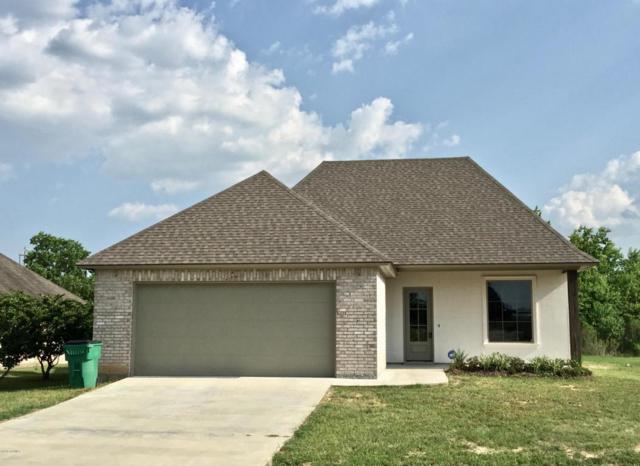 12415 Beau Soleil Drive, Abbeville, LA 70510 (MLS #18007745) :: Cachet Real Estate