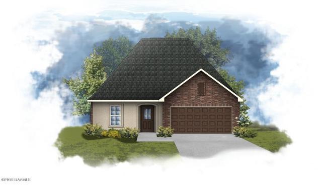 204 Stanwell Avenue, Duson, LA 70529 (MLS #18007769) :: Cachet Real Estate