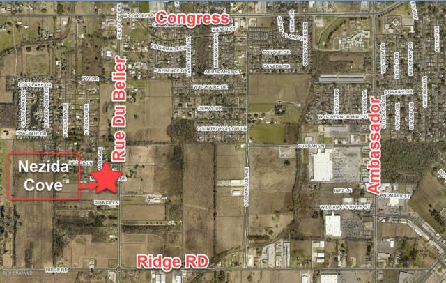 115 Millie Park Drive, Lafayette, LA 70506 (MLS #18009243) :: Cachet Real Estate