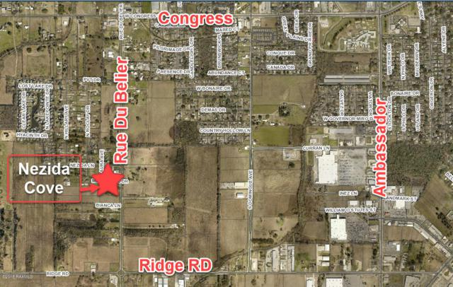 99 Millie Park Drive, Lafayette, LA 70506 (MLS #18009249) :: Keaty Real Estate