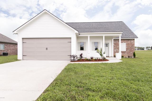 1252 Delcambre Road, Breaux Bridge, LA 70517 (MLS #18009262) :: Keaty Real Estate