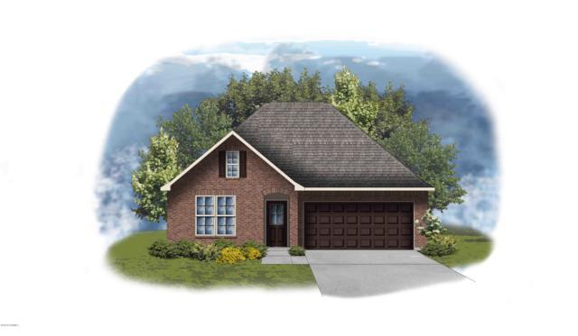 406 Gray Birch Loop, Youngsville, LA 70592 (MLS #18009270) :: Keaty Real Estate