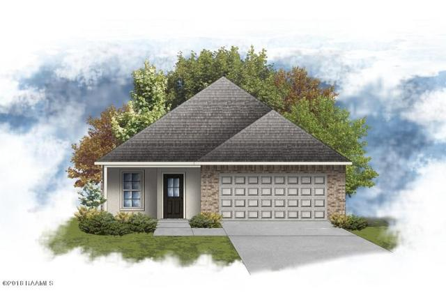 501 Gray Birch Loop, Youngsville, LA 70592 (MLS #18009494) :: Keaty Real Estate