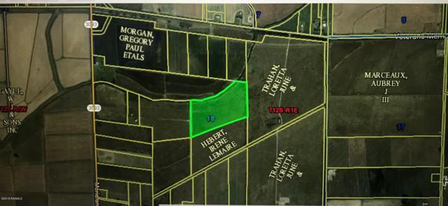 Tbd Meridian Line Road, Gueydan, LA 70542 (MLS #18009652) :: Red Door Realty