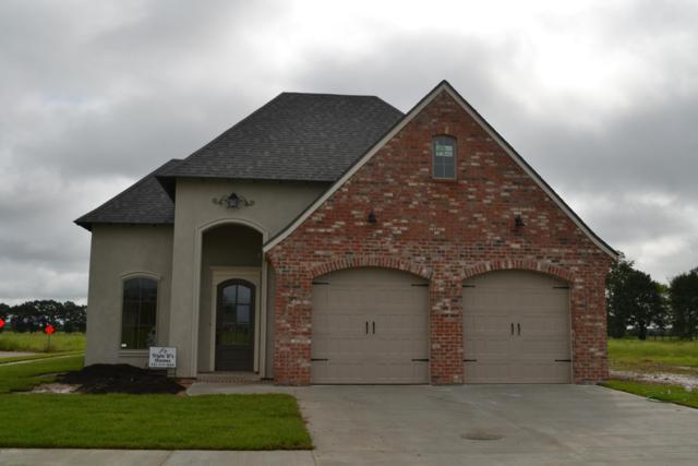 201 San Domingo, Youngsville, LA 70592 (MLS #18010149) :: Keaty Real Estate