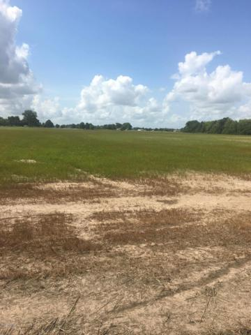 727 Malapart Rd Road, Scott, LA 70583 (MLS #18010368) :: Cachet Real Estate