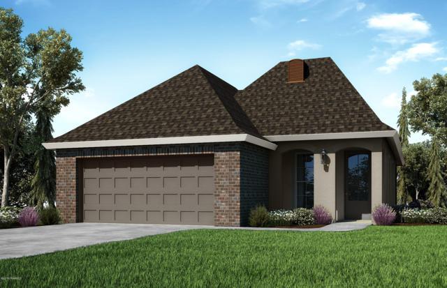 102 Placide Drive, Lafayette, LA 70508 (MLS #18011309) :: Cachet Real Estate