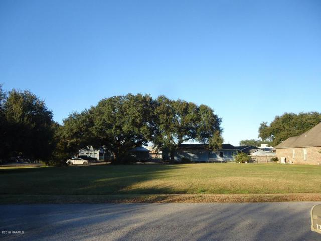 12428 Beau Soleil, Abbeville, LA 70510 (MLS #18012420) :: Keaty Real Estate