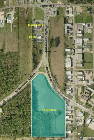 1001 Ambassador Caffery Parkway, Lafayette, LA 70506 (MLS #19000037) :: Robbie Breaux & Team