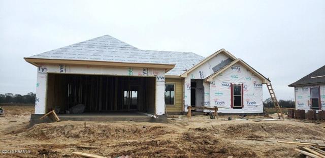 303 Doan Drive, Scott, LA 70583 (MLS #19000464) :: Keaty Real Estate