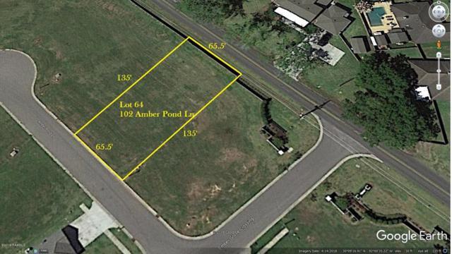 102 Amber Pond Lane, Lafayette, LA 70508 (MLS #19001108) :: Keaty Real Estate