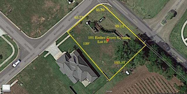 101 Ember Grove Crossing, Lafayette, LA 70508 (MLS #19001109) :: Keaty Real Estate
