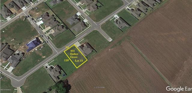 405 Ember Grove Crossing, Lafayette, LA 70508 (MLS #19001112) :: Keaty Real Estate