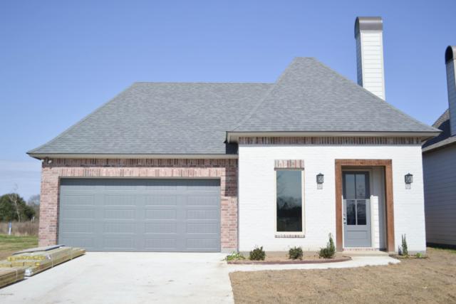 205 Octavia Drive, Scott, LA 70583 (MLS #19001426) :: Keaty Real Estate