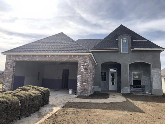212 Gentle Island Drive, Broussard, LA 70518 (MLS #19001669) :: Keaty Real Estate
