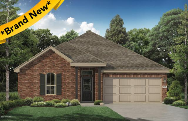 110 Jeanne Picard Drive, Maurice, LA 70555 (MLS #19001715) :: Keaty Real Estate