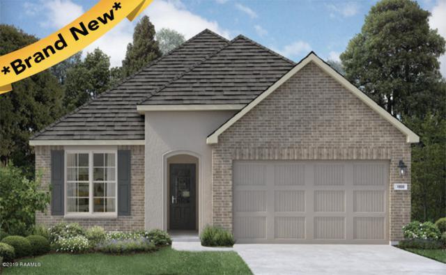 112 Jeanne Picard Drive, Maurice, LA 70555 (MLS #19001716) :: Keaty Real Estate