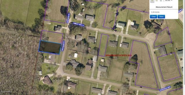 Tbd Briarwood Drive, Sunset, LA 70584 (MLS #19002010) :: Keaty Real Estate