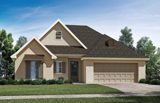201 Safe Haven Drive, Carencro, LA 70520 (MLS #19002297) :: Keaty Real Estate