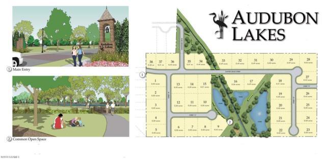 14 Audubon Lakes, Lafayette, LA 70508 (MLS #19003100) :: Keaty Real Estate