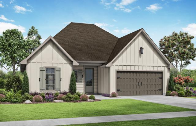 119 Harton Road, Youngsville, LA 70592 (MLS #19004070) :: Keaty Real Estate
