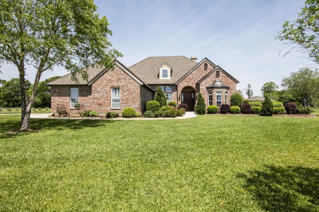 156 Fountainbleau Drive, Opelousas, LA 70570 (MLS #19004220) :: Keaty Real Estate