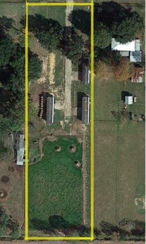 655 Saddle Drive, Eunice, LA 70535 (MLS #19004961) :: Keaty Real Estate