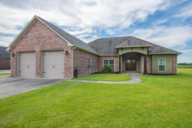 1059 Brookewood Drive, St. Martinville, LA 70582 (MLS #19005937) :: Keaty Real Estate