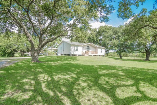 12336 Louisiana 339, Erath, LA 70533 (MLS #19006436) :: Keaty Real Estate