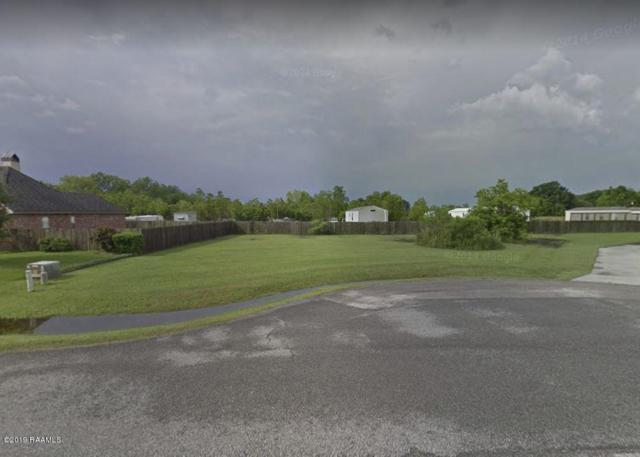 203 Wadesboro Road, Carencro, LA 70520 (MLS #19006901) :: Robbie Breaux & Team
