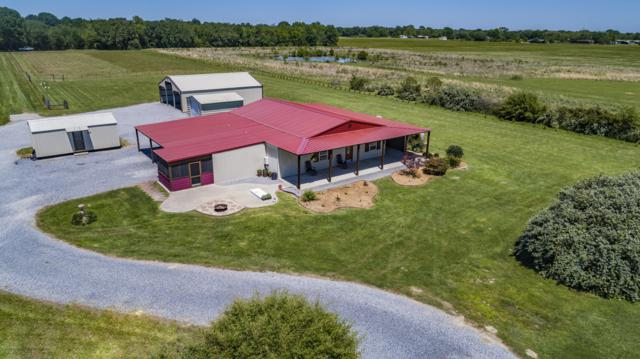 841 Hwy 358, Church Point, LA 70525 (MLS #19007178) :: Keaty Real Estate