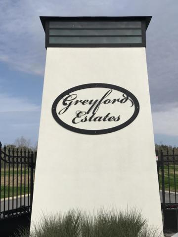 209 Greyford Drive, Lafayette, LA 70503 (MLS #19008199) :: Keaty Real Estate