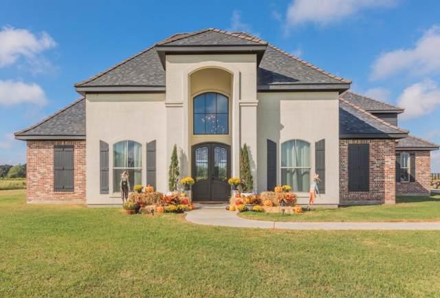 255 Lake Cove Drive, Rayne, LA 70578 (MLS #19010043) :: Keaty Real Estate