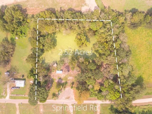 109 Springfield Road, Carencro, LA 70520 (MLS #19010099) :: Keaty Real Estate