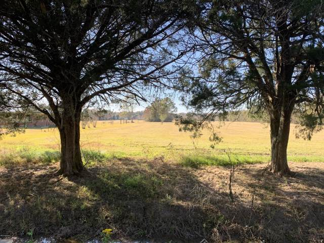 2800 Blk Hoffpauir Road, Rayne, LA 70578 (MLS #19011621) :: Keaty Real Estate