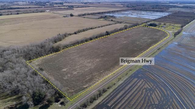 Tbd Brigman Hwy, Church Point, LA 70525 (MLS #19012356) :: Keaty Real Estate