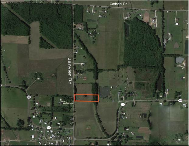 800 Blk Janvier Road, Scott, LA 70583 (MLS #20000452) :: Keaty Real Estate