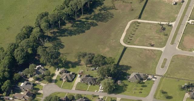 102 Leatherback Lane, Broussard, LA 70518 (MLS #20000639) :: Keaty Real Estate