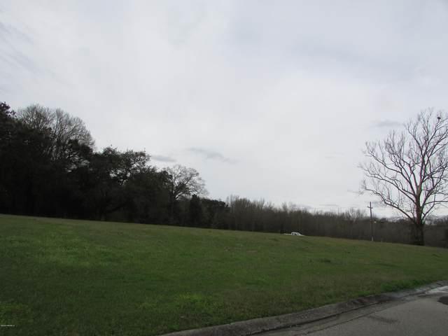 101 Grandview Terrace Drive, Youngsville, LA 70592 (MLS #20001517) :: Keaty Real Estate