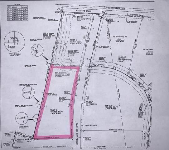 Tbd Abigail Lane Lane, Sunset, LA 70584 (MLS #20001841) :: Keaty Real Estate