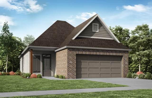 208 Anza Drive, Youngsville, LA 70592 (MLS #20004193) :: Keaty Real Estate