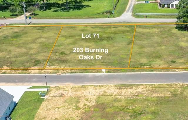 203 Burning Oaks Drive, Carencro, LA 70520 (MLS #20004374) :: Keaty Real Estate