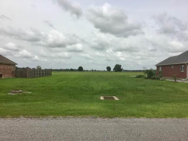 Wildcat Drive, Abbeville, LA 70510 (MLS #20005675) :: Keaty Real Estate